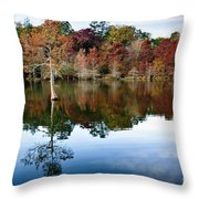 Beaver's Bend Defiant Cypress Throw Pillow