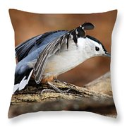 Defiant Nuthatch Throw Pillow