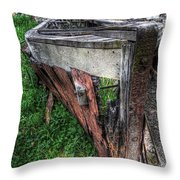 Dehydrated Throw Pillow
