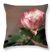 Delany Sister Throw Pillow