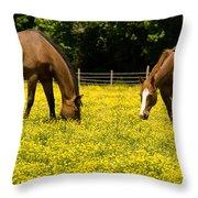 Delaware Dandilions Throw Pillow