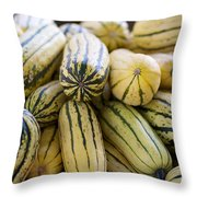 Delicata Winter Squash Throw Pillow