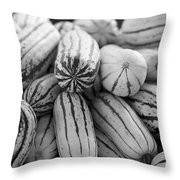 Delicata Winter Squash In Black Throw Pillow