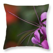 Delicate Blossom Throw Pillow