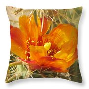 Delicate Cactus Flower Throw Pillow