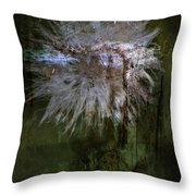 Delicate Daughters  Throw Pillow