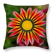 Delicate Designs Throw Pillow