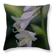 Delicate Lillies Throw Pillow