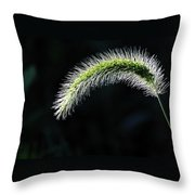 Delicate - Greeting Card Throw Pillow