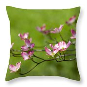 Delicate Pink Dogwood Blossoms Throw Pillow