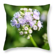 Delicate Purple Flower Throw Pillow