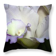 Delicate Purple Orchid Throw Pillow
