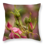 Delicate Renewal Throw Pillow