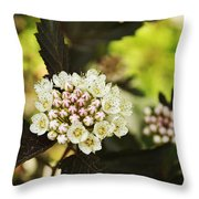 Delicate Spring Bloom Throw Pillow