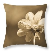 Delicate Wings Throw Pillow