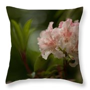 Delicately Peach Throw Pillow