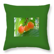 Delicious Plums On The Branch Throw Pillow
