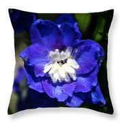 Delphinium Face Throw Pillow