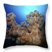 Dendronephthya Soft Coral, Acasta Reef Throw Pillow