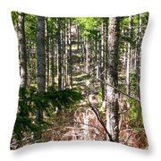 Depth Of Trees Throw Pillow