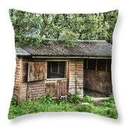 Derelict Stable Throw Pillow