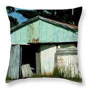 Derilict Building Throw Pillow by Phill Petrovic
