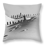 Desert Beach Throw Pillow