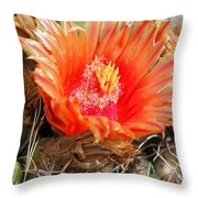 Desert Beauty Throw Pillow