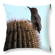Desert Bird Atop Saguaro Throw Pillow