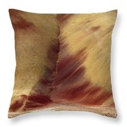Desert Brushstrokes Throw Pillow