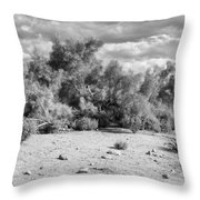Desert Cloud Bw Palm Springs Throw Pillow