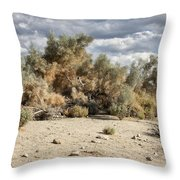 Desert Cloud Palm Springs Throw Pillow