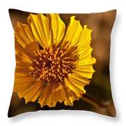 Desert Dandelion Throw Pillow