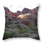 Desert Glow Throw Pillow