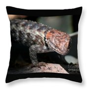 Desert Lizard Throw Pillow