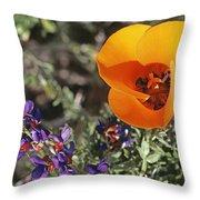 Desert Mariposa Tulip & Coulters Throw Pillow