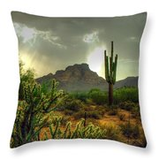 Desert Sun Rays Throw Pillow