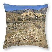 Desert Washout Throw Pillow
