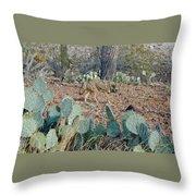 Desert Wolf Throw Pillow