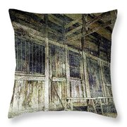 Deserted Chinese Farm House Throw Pillow