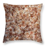 Desert's Collection Of Dried Flowers 2 Throw Pillow
