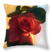 Desire In Coral Throw Pillow