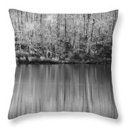 Desolate Splendor Bw Throw Pillow