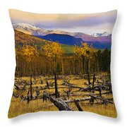 Destruction And Re-growth After Forest Throw Pillow