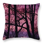 Detail Of Bare Trees Silhouetted Throw Pillow