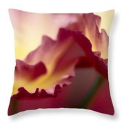 Detail Of Crimson Colored Rose Petals Throw Pillow
