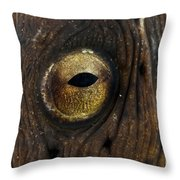 Detail Of The Eye Of A Snake Eel, North Throw Pillow