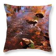 Details In Nature Throw Pillow
