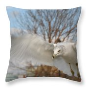 Determined Gull Throw Pillow
