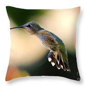 Determined Hummingbird Throw Pillow